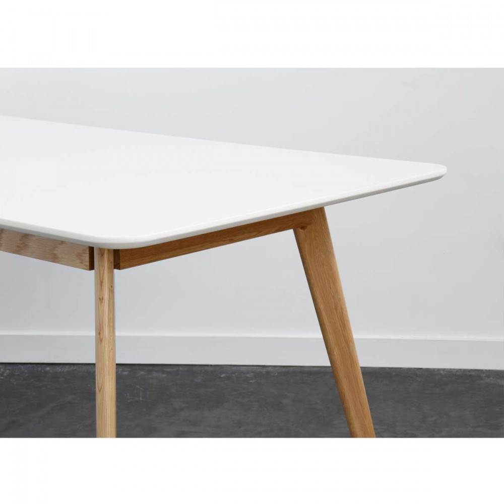 Salle a manger style scandinave for Table salle a manger design
