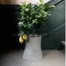 Vase / cache-pot en béton léger Nuclear Plant 64 cm XL