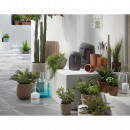 Lot de 2 cache-pots design ciment Lisandre