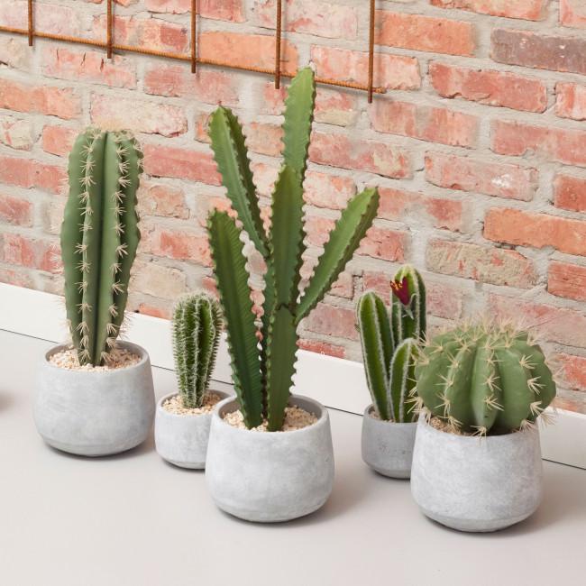 Cactus artificiel en pot ciment 26cm Cactus