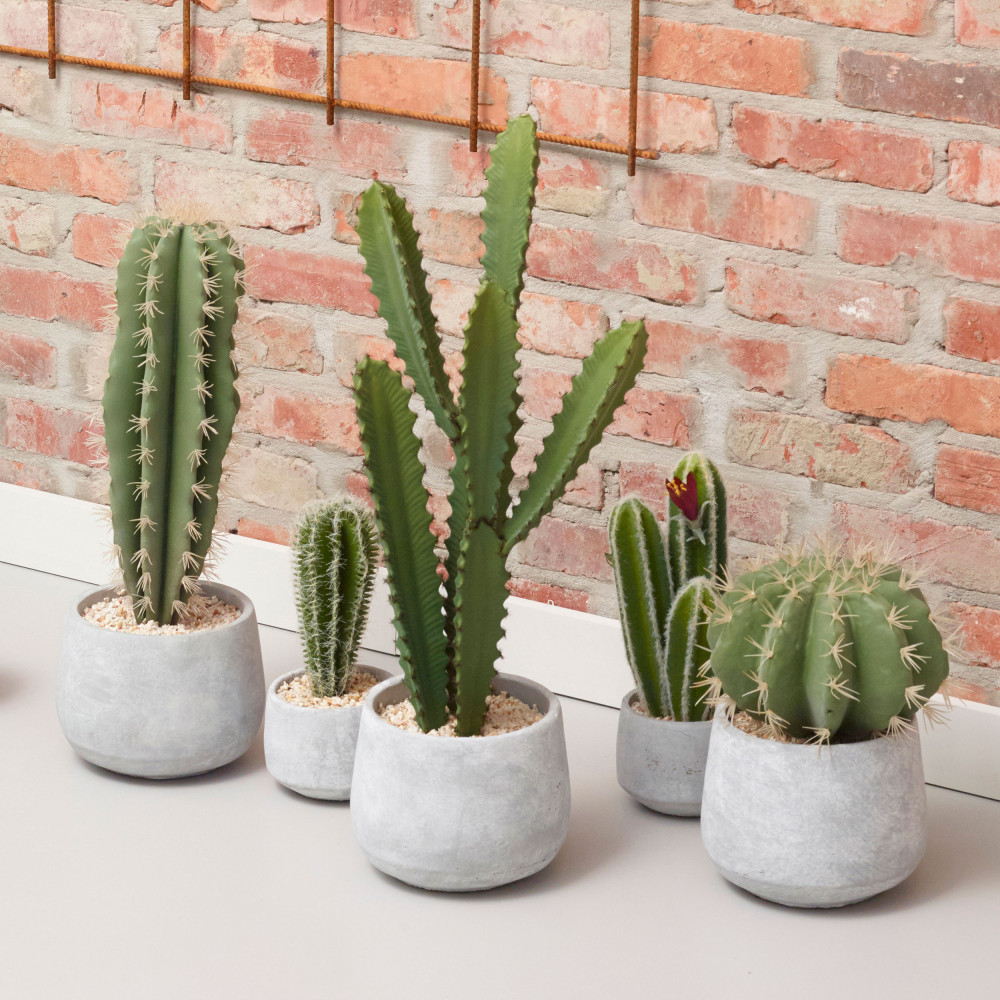 cactus artificiel en pot ciment 42cm pomax drawer. Black Bedroom Furniture Sets. Home Design Ideas