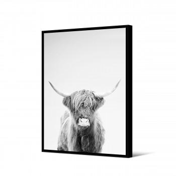 Tunuyan - Toile imprimée bison 92,5x65cm