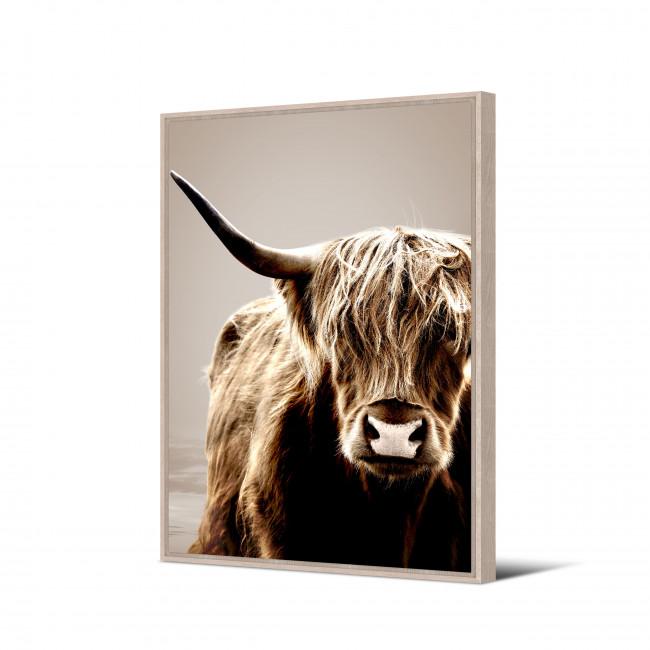 Uquia - Toile imprimée bison sepia 92,5x65cm