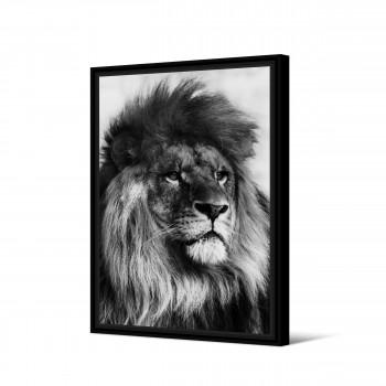 Mweka - Toile imprimée lion 92,5x65cm