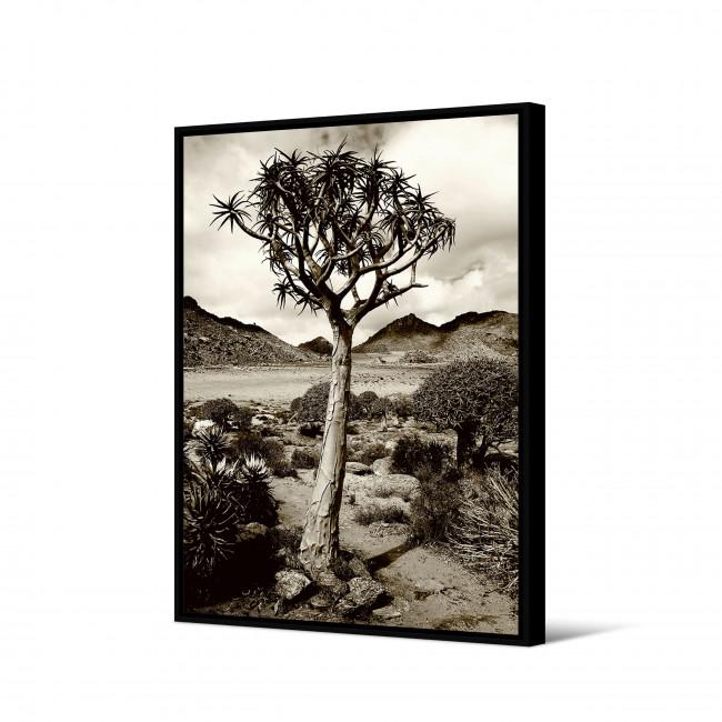 Tousa - Toile imprimée désert 92,5x65cm