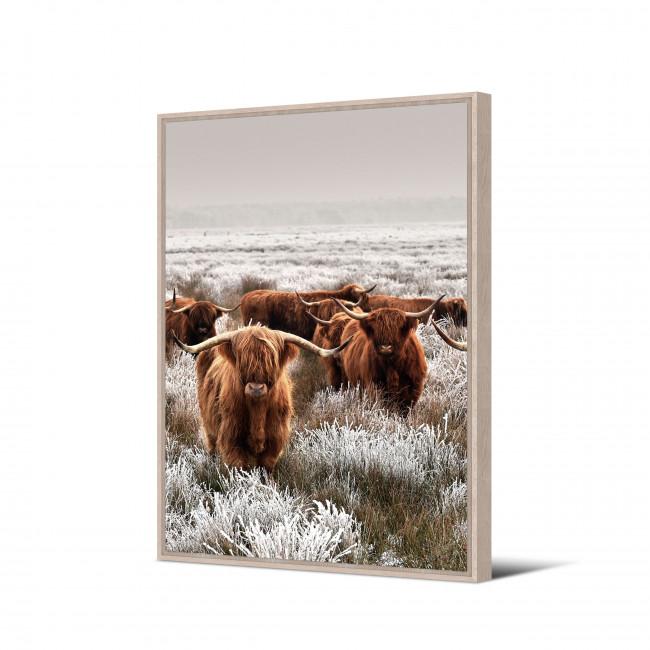 Tacuati - Toile imprimée bisons 92,5x65cm