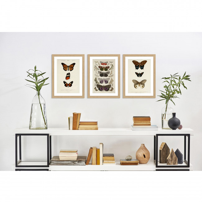 Finnoya - Image encadrée papillons 50x40cm