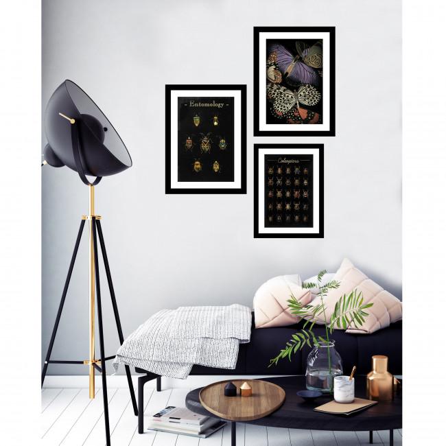 Stokesley - Image encadrée insectes 50x40cm
